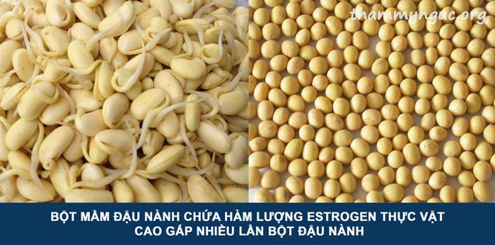 cách uống mầm đậu nành tăng vòng 1